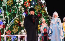 Participation in the New Year Tree lighting ceremony